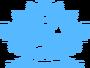 Team sii logo.png