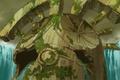 Kuppel von Aslant erscheint