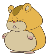 PL2 Hamster2