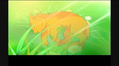 SSS Warrior cats intro - English-1528896861
