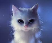1-white-cat