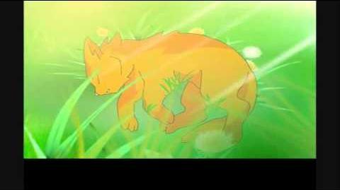 SSS Warrior cats intro - English