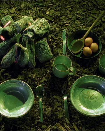 Omelette aux champignons et eau du marais.jpg
