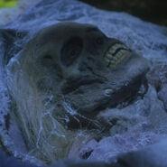 5-Squelette de la belle-mère maléfique
