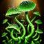 Fury Fungus item