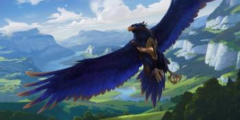 An Azurite Eagle named Valor.