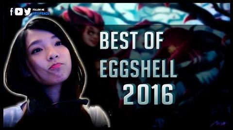 Eggshell Montage - Best of Eggshell 2016