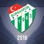 Bursaspor Esports 2018 profileicon