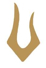 Dark Star Logo.png