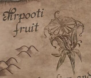 The fruit of a Nirpooti