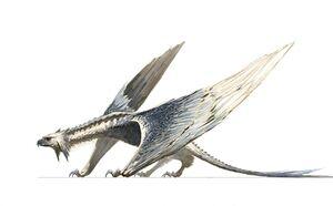 Demacia Demacia Raptors 02