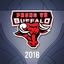 Phong Vũ Buffalo 2018 profileicon