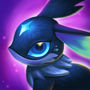A portrait of a Moontipped Hushtail.