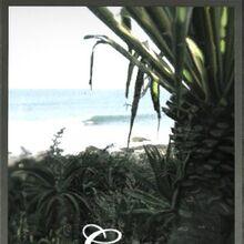 Pangea Air ad.jpg