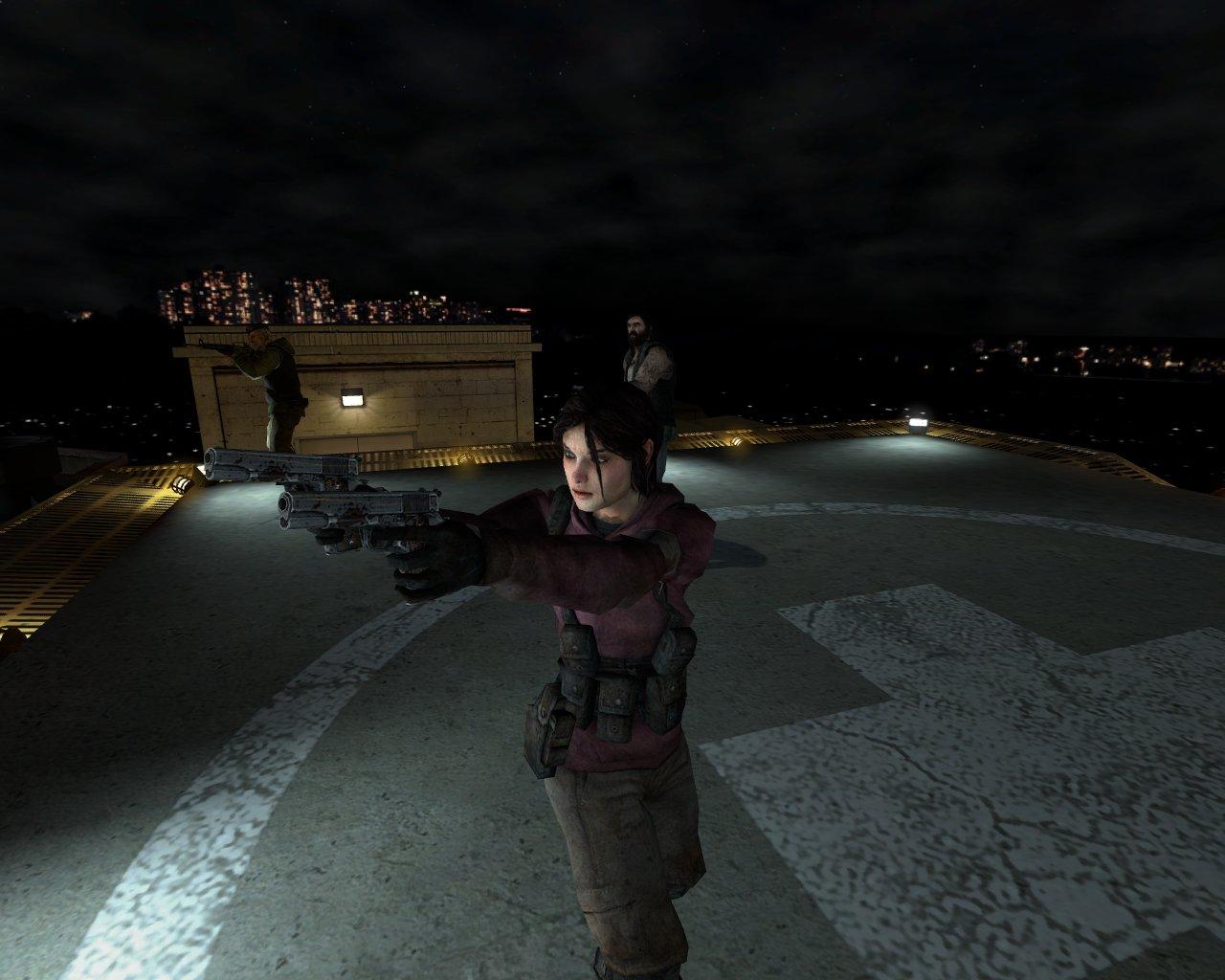 Zoey-roof-1-.jpg
