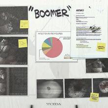 BoomerPosterCEDA.jpg