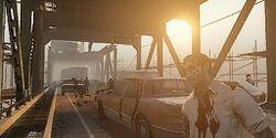 C5m5 bridge.jpg