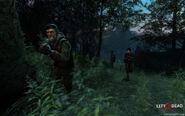 Cornfield-survivors-2560