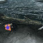 Seashell Example Location3.jpg