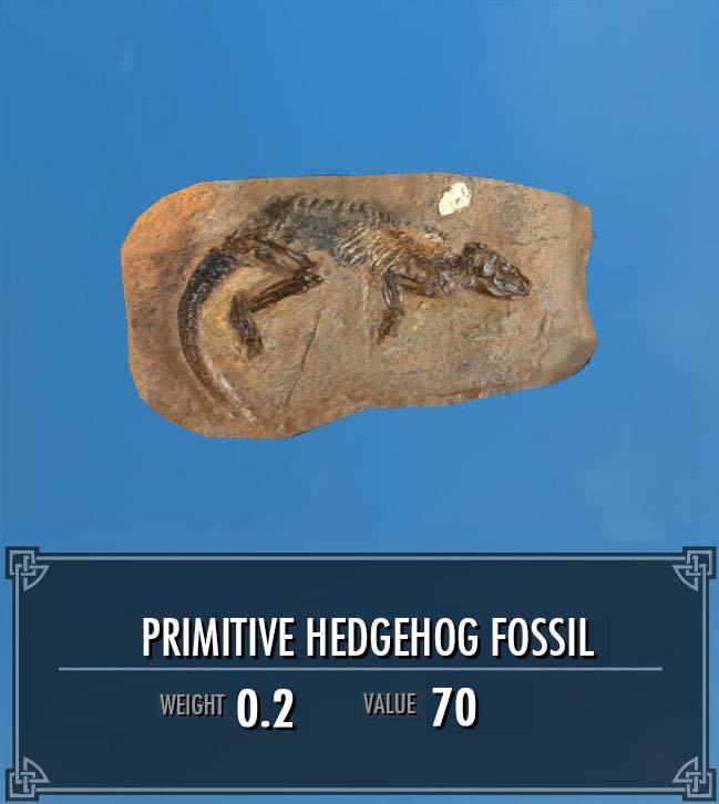 Primitive Hedgehog Fossil