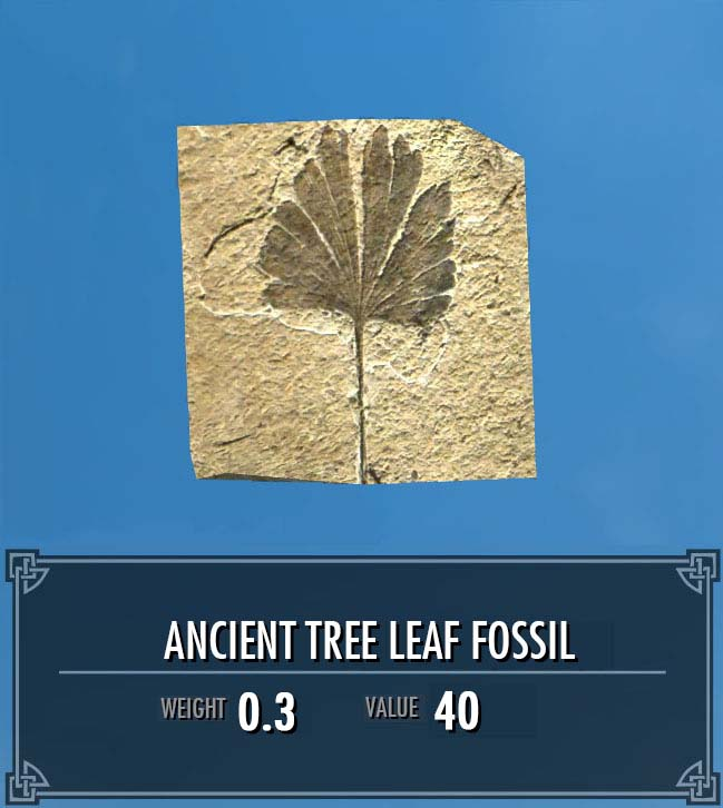 Ancient Tree Leaf Fossil