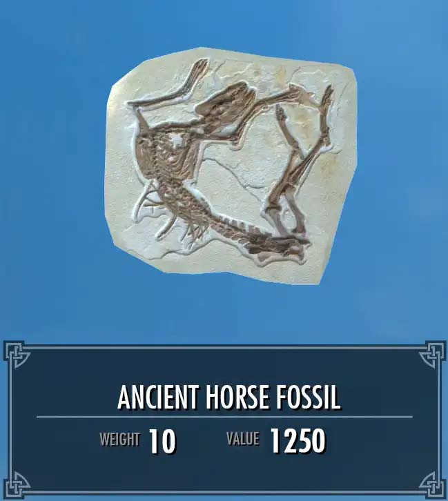 Ancient Horse Fossil