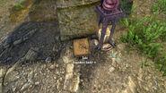 Dragonbone Amulet-Shrine of Akatosh-location