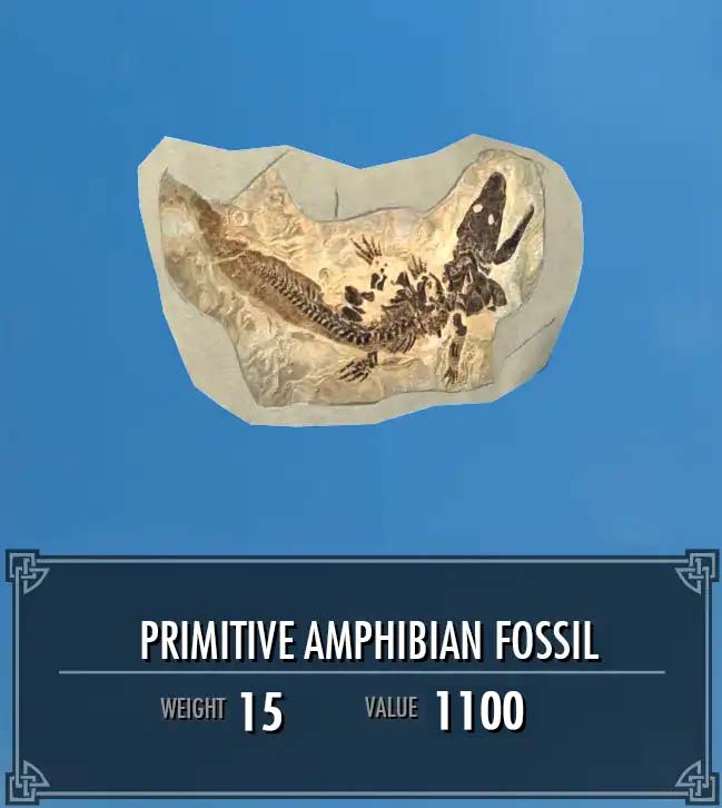 Primitive Amphibian Fossil