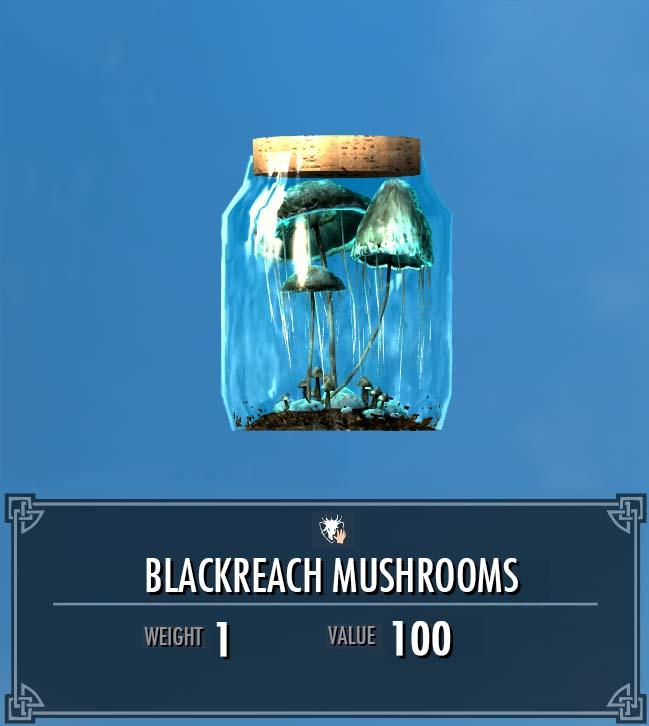 Blackreach Mushrooms
