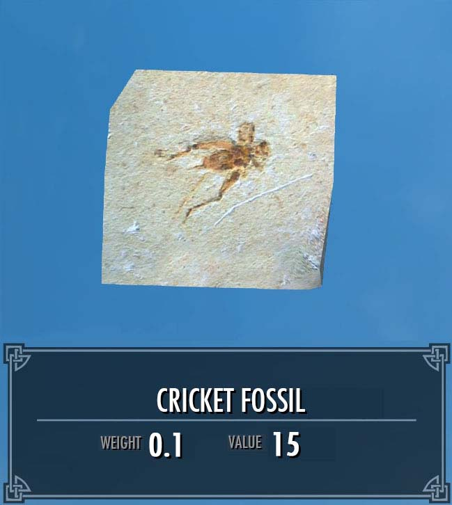 Cricket Fossil