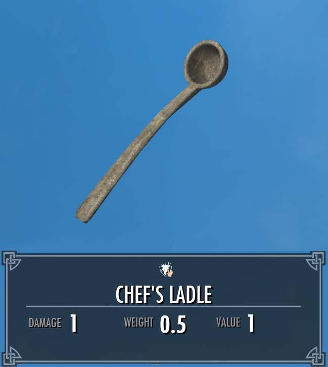 Chef's Ladle