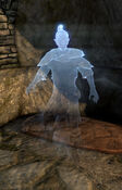 Wyndelius Gatherian-ghost