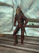 Shadowhunt-assassin