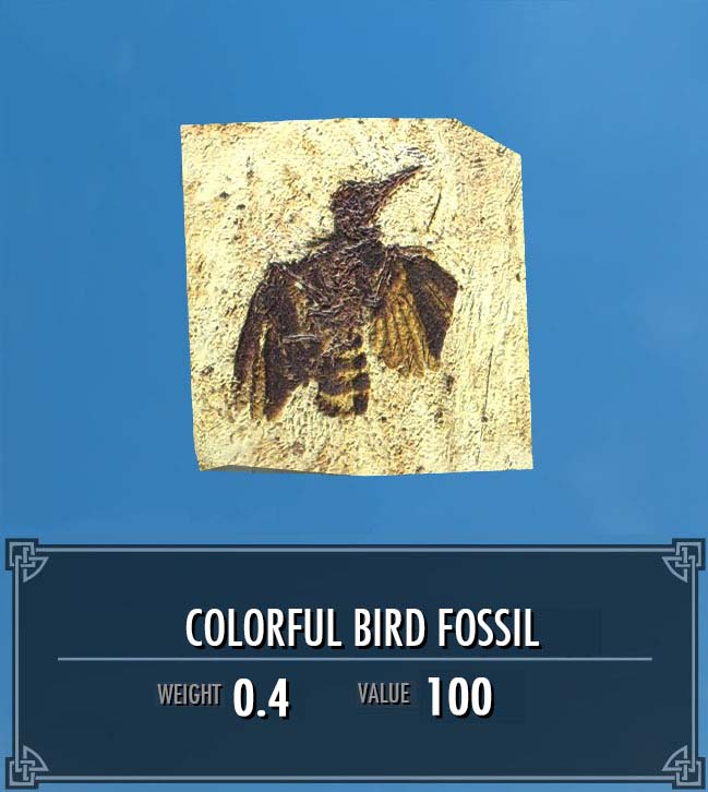 Colorful Bird Fossil