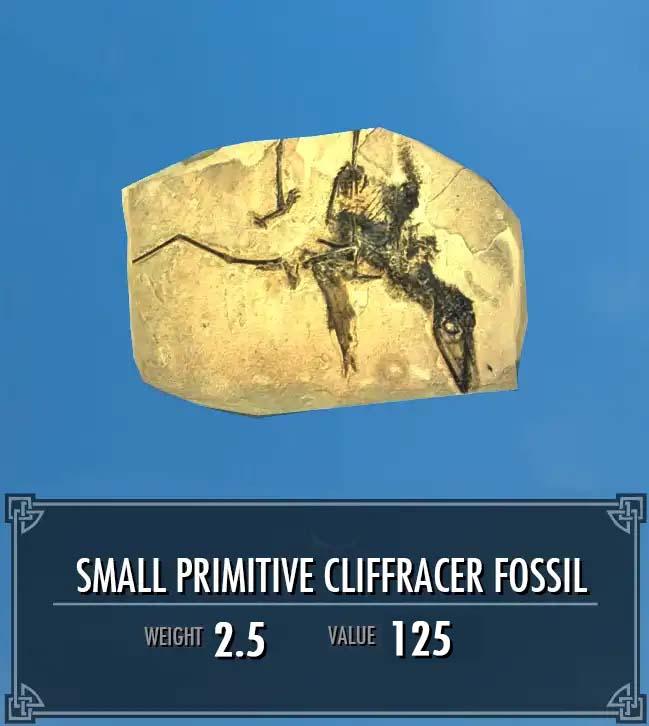Small Primitive Cliffracer Fossil