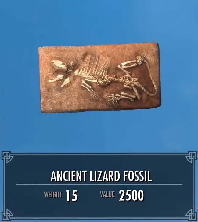 Ancient Lizard Fossil