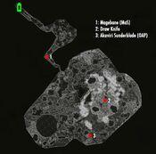 Ancestor Glade-localmap