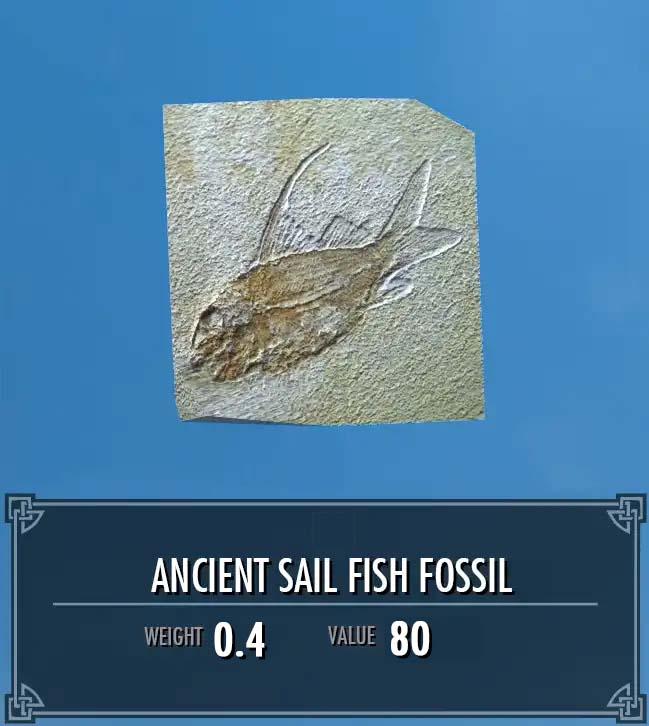 Ancient Sail Fish Fossil