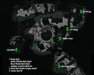 Labyrinthian-localmap