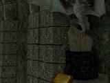 Skyrim's Unique Treasures Room (SSE)