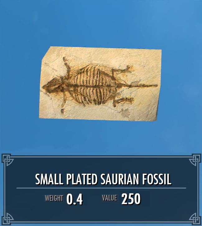 Small Plated Saurian Fossil