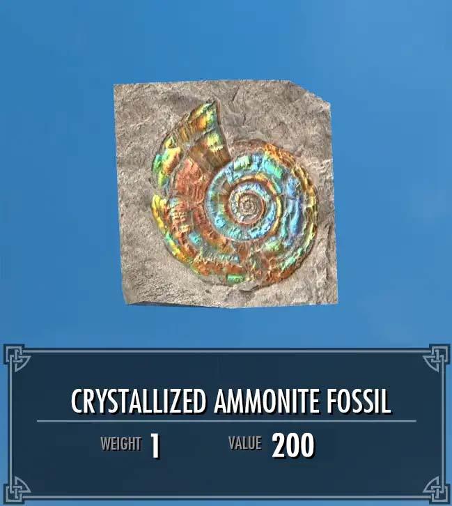 Crystallized Ammonite Fossil