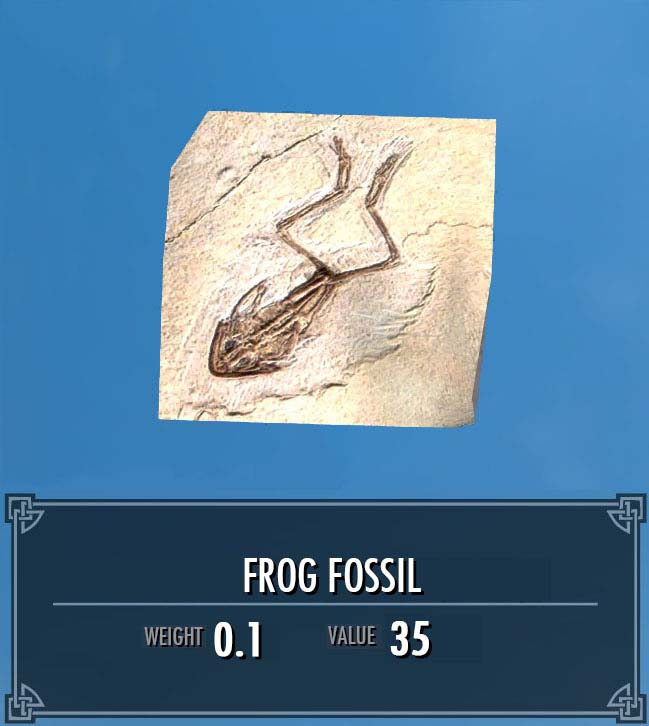 Frog Fossil