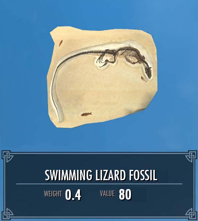 Swimming Lizard Fossil