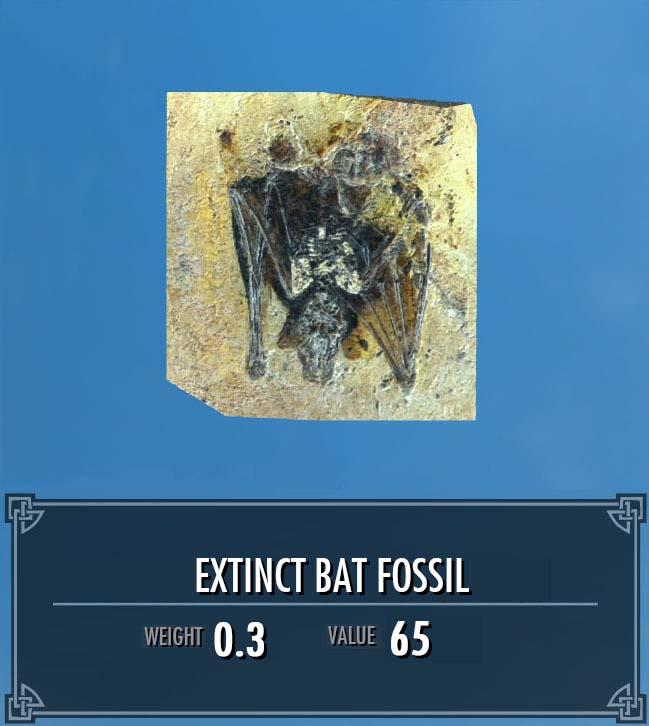 Extinct Bat Fossil
