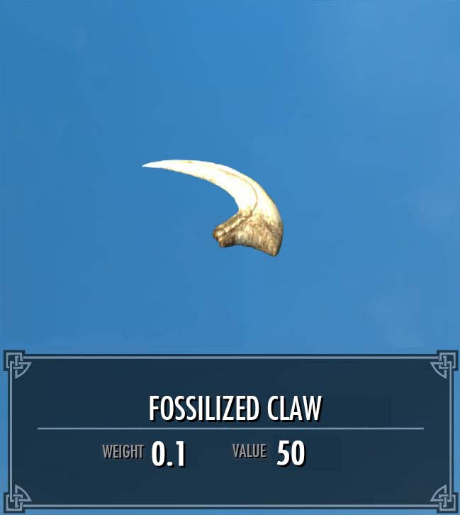 Fossilized Claw