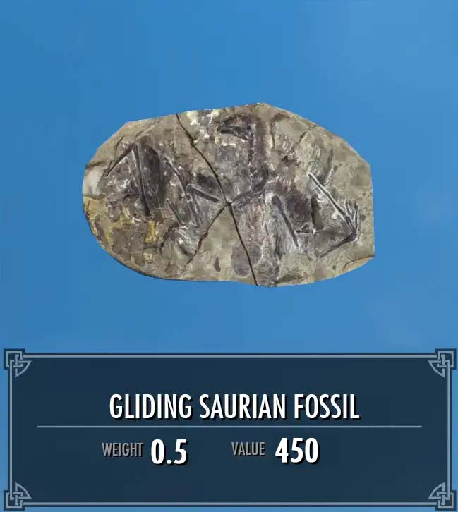 Gliding Saurian Fossil