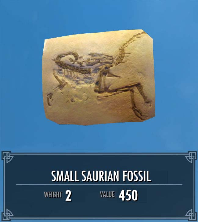Small Saurian Fossil