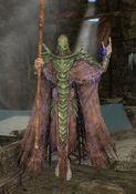 Rahgot-dragonpriest