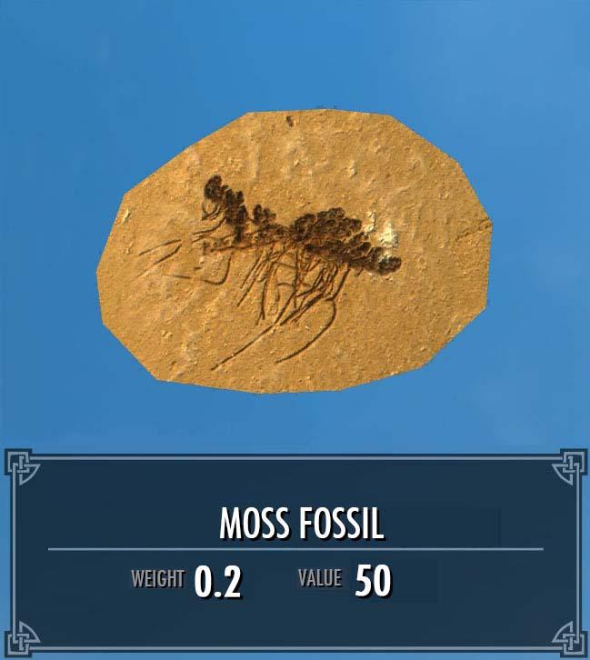 Moss Fossil